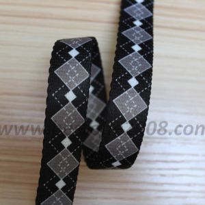 Heat Transfer Webbing#1312-92 pictures & photos
