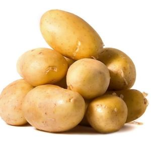 New Crop Potato Vegetable pictures & photos