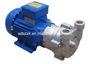 2BV2070 One/Single Stage Water/Liquid Ring Vacuum Pump (price)