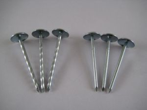 Roofing Nails With Umbrella Head pictures & photos