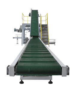 Grain Weighing and Packging Machine pictures & photos