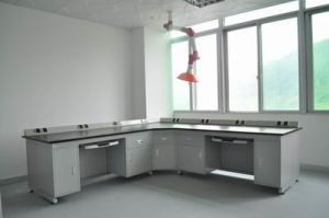 Professional Lab Furniture Lab Wall Bench Lab Side Bench (QG-H-YQT-15) pictures & photos