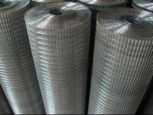Galvanized Welded Wire Mesh S0202 pictures & photos