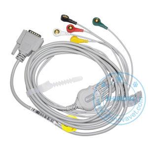 3-Channel Veterinary Electrocardiograph/ECG Machine (ECG-30AV) pictures & photos