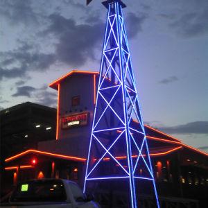 Colorful LED Neon Flex Light for Building Decoration pictures & photos