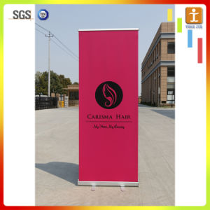 Economical Roll up Display Banner Stand pictures & photos