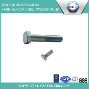 Gr8.8 Galvanized Hex Bolt with Nut Washer pictures & photos