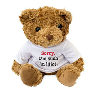 Valentine′s Plush Bear Toy with T Shirt pictures & photos