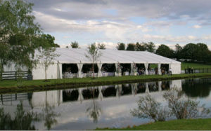 Hot Sale Party Tent, Wedding Event Tent With PVC Sidewall pictures & photos