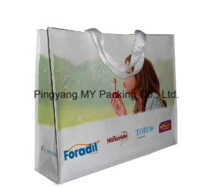 Cheap Promotional PP Woven Printed Recyclable Plastic Shopping Bag pictures & photos