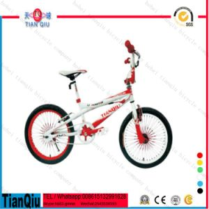 Kid′s Bicycle_Bike_Mini BMX_with Titanium Tubes for Bike BMX Bicycle pictures & photos