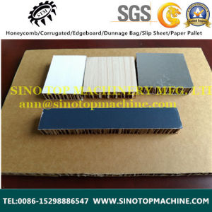 Corrugated Paper Cardboard for Building Field as House pictures & photos