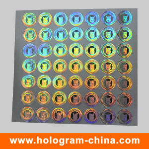Silver Laser Hologram 2D 3D Holographic Sticker pictures & photos