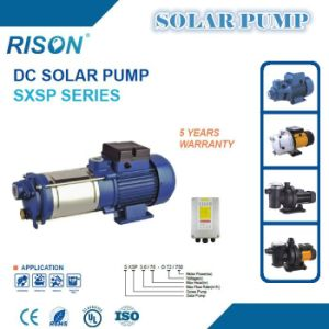 Horizontal Surface Solar Water Pump (5 Years Warranty) pictures & photos