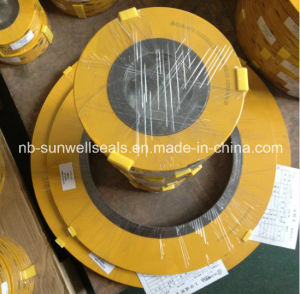 304graphite Spiral Wound Gaskets/Cgi/Cg/Gaskets (SUNWELL) pictures & photos
