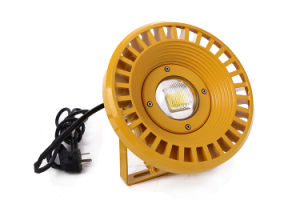 C Class II Anti Explosion 100W LED Explosion-Proof Light pictures & photos