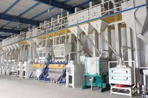 Rice Milling Plant Ctnm60-80 pictures & photos