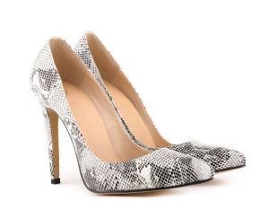 2016 Latest Fashion High Heel Lady Shoes (A102)