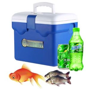 Mini Cooler Box 9liter Suitable for Outdoor Activity Use pictures & photos