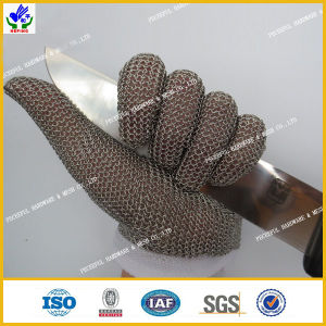 High Quality Stainless Steel Gloves pictures & photos
