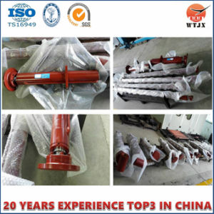 Hydraulic Oil Cylinder for Trailer Lift pictures & photos