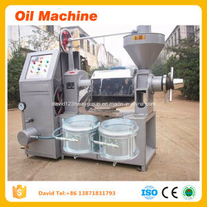 Original Oil Expeller and Mini Oil Mill Screw Type Sunflower Oil Mill Project for Sale pictures & photos