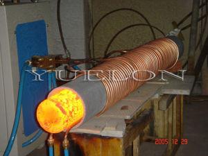 Unique Heat Treatment Furnace for Forging pictures & photos