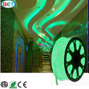 SMD5050 IP67 Waterproof LED Christmas Light with ETL Certificates pictures & photos