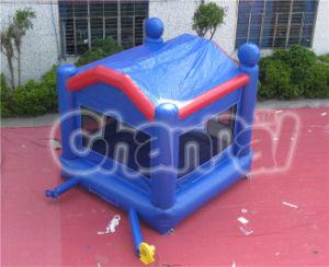 Inflatable Bouncer Amusement Park pictures & photos