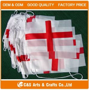 Pennant Flag, Triangle Flag, String Flag, Bunting Flying Flag pictures & photos