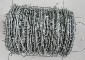 High Quality New Design Barbed Wire pictures & photos