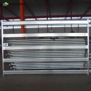 Australia Standard 1.8X2.1m 5 Bar Cattle Yard Panel pictures & photos