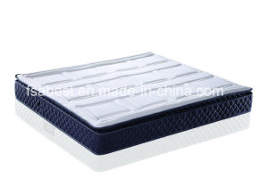 Extremely Competitive Pillow Top Mattress pictures & photos