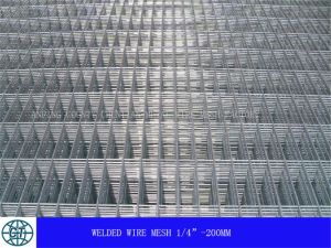 Welded Wire Mesh (HP-001) pictures & photos