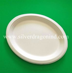 Biodegradable Disposable Sugarcane Bagasse Paper Plate, 10 Inch Three Compartments pictures & photos