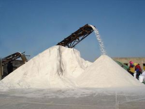 Chemical Manufacturer Supply Large Particles Sea Salt pictures & photos