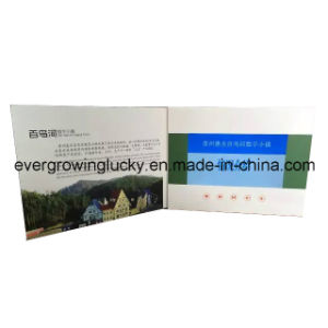 Custom Design LCD Screen Video Brochure for Events pictures & photos