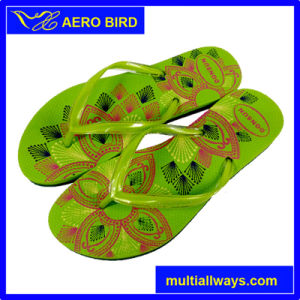 New Colorful Fashion PE Sole Slipper for Ladies (15I009) pictures & photos