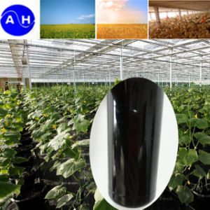 High Quality Enzymolysis Amino Acid Liquid Pure Vegetable Source pictures & photos