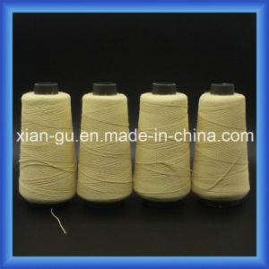 PARA-Aramid Twisted Yarn pictures & photos