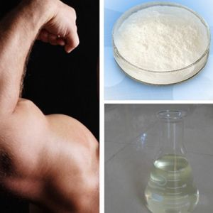 Muscle Bodybuilding White Primobolan Powder Methenolone Acetate pictures & photos