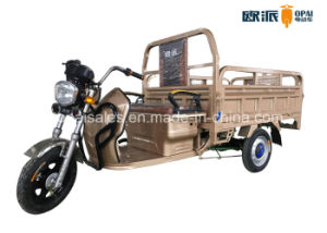 Electric Tricycle 1.6m Hopper Double Seats Electric Cargo Trike pictures & photos