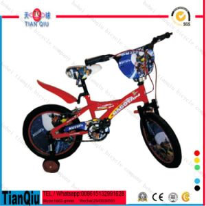 "12"" 14"" 16"" 20"" Inch Girl Bicycle with Front or Rear Basket Good Quality pictures & photos"