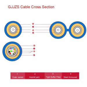 Indoor Armoured Fiber Optic Cable (GJJZS) pictures & photos