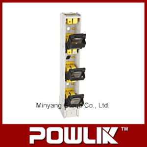 Hr 160L Series Vertical Strip Type Fuse Switch Disconnector pictures & photos