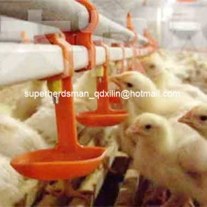 Automatic Nipple Drinking System for Poultry House pictures & photos