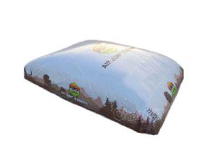 Big Inflatable Air Ski Bag Chsp542 pictures & photos