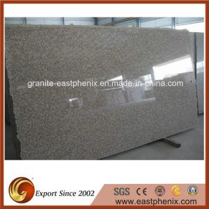 Natural G664 Granite Stone Slab pictures & photos