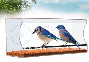 Custom Large & Clear Acrylic Window Bird Feeder with Drain Holes pictures & photos