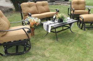 Swivel&Glide Chat Group Garden Cast Aluminum Set Furniture pictures & photos